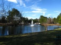 Govenors Park Pond, NE bank