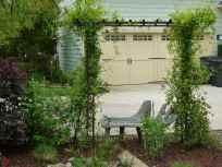 Malekpour Garden-11