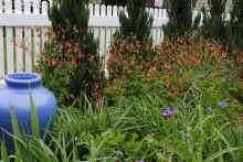 Moffat Garden-7