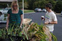 2013 Plant Swap - 13