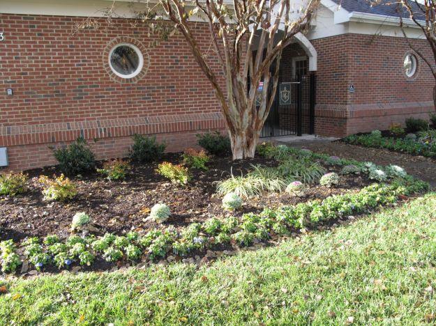 Pool Foundation Planting 2014-11-27